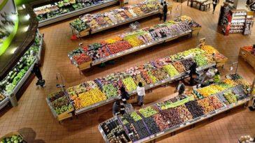 les consommateurs europeens activistes