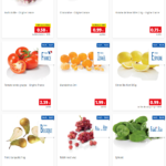 catalogue lidl 29/03/2021